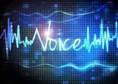 spitch_voice