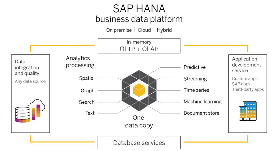 SAP HANA® consente di prendere rapidamente decisioni sicure e intelligenti